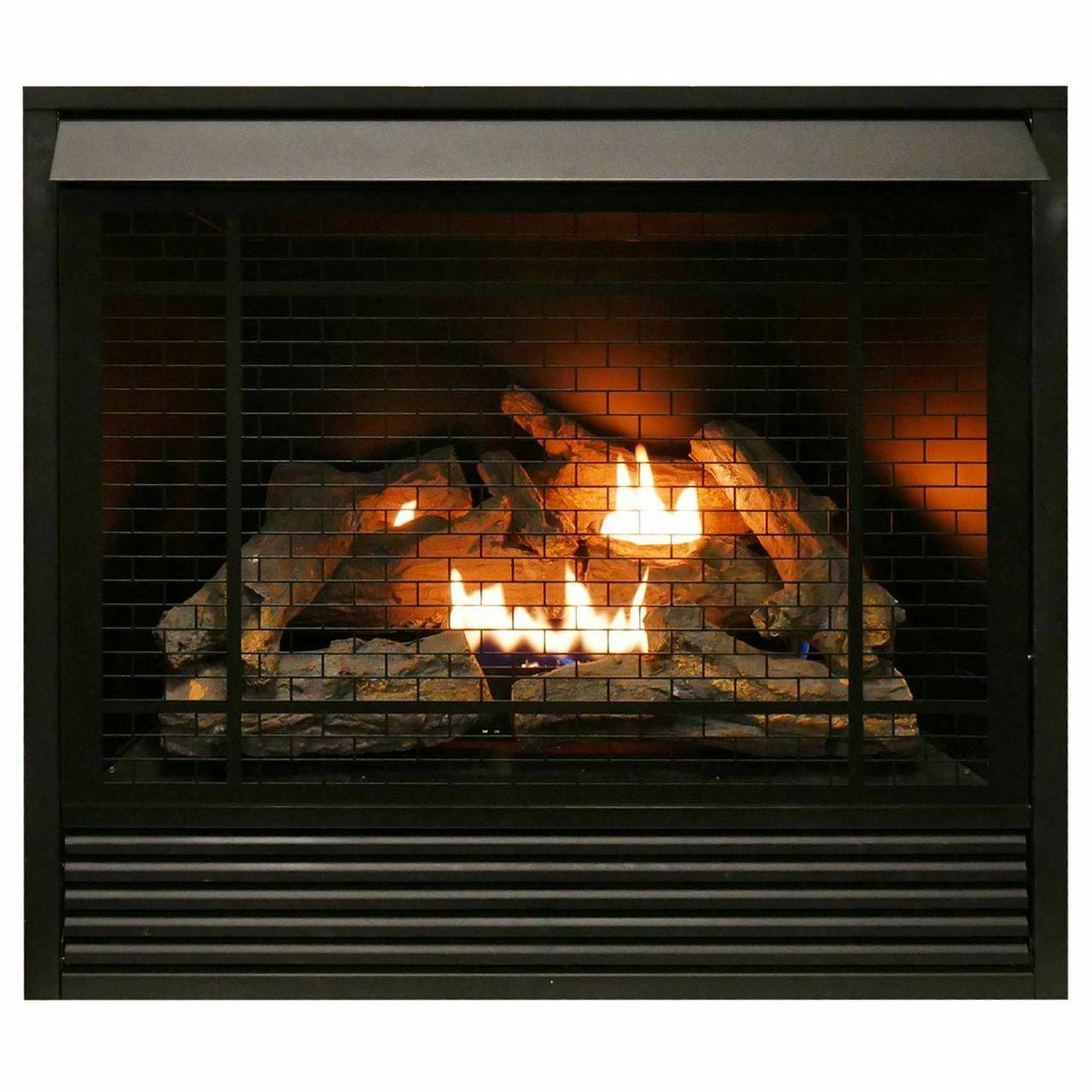 dual fuel vent fireplace insert